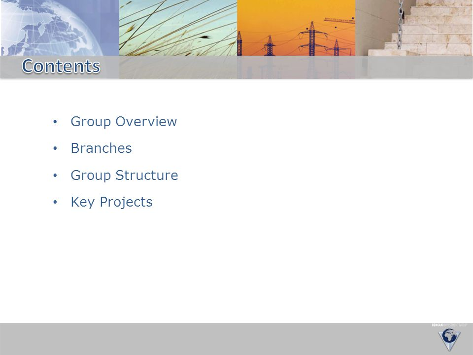 Contents Group Overview Branches Group Structure Key Projects