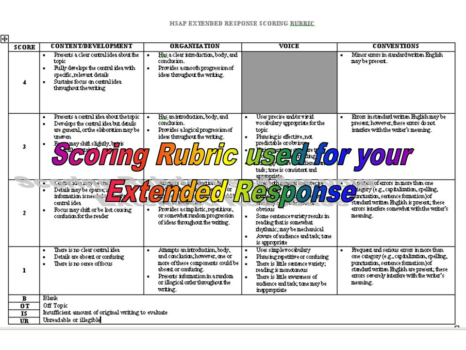 Scoring Rubric used for your