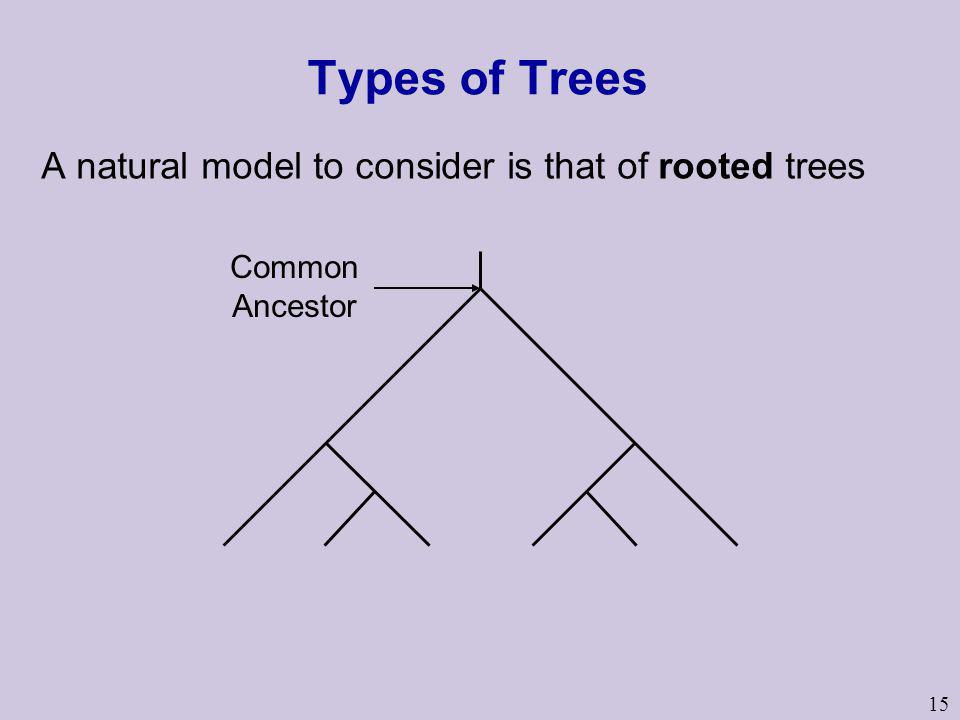 Types of Trees A natural model to consider is that of rooted trees