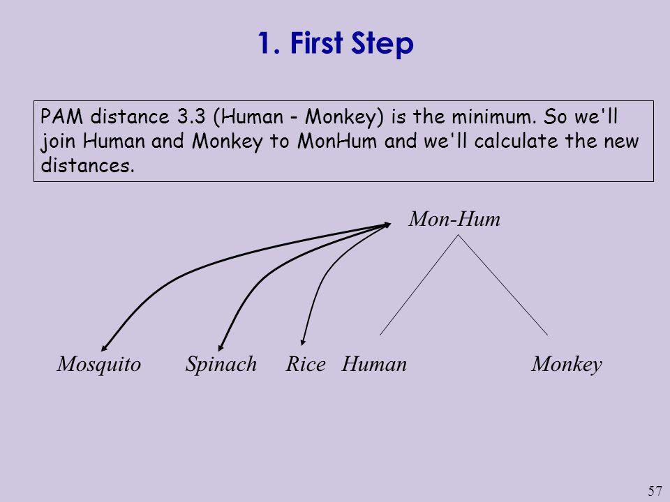 1. First Step Mon-Hum Mosquito Spinach Rice Human Monkey