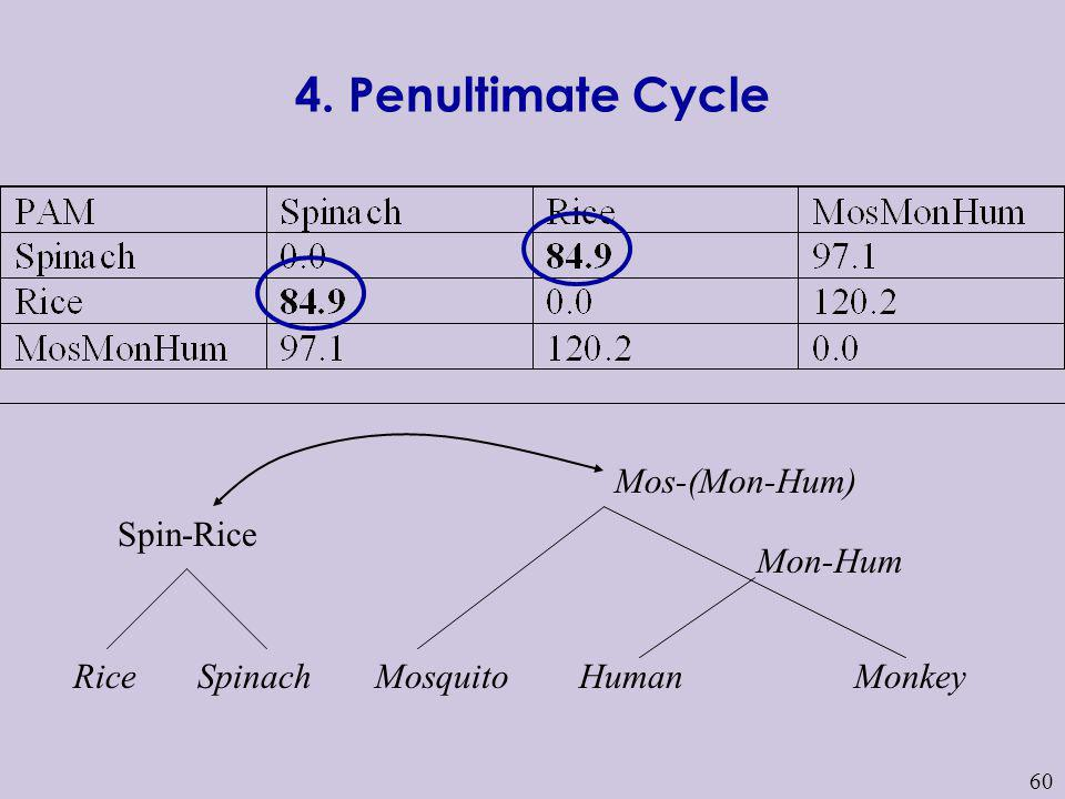 4. Penultimate Cycle Mos-(Mon-Hum) Spin-Rice Mon-Hum Rice Spinach