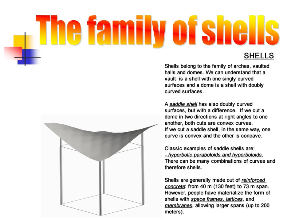 The family of shells