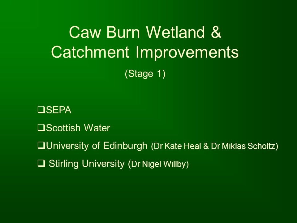Caw Burn Wetland & Catchment Improvements
