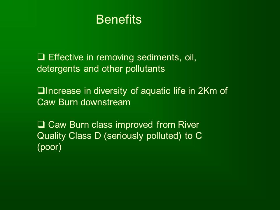 Benefits Effective in removing sediments, oil, detergents and other pollutants. Increase in diversity of aquatic life in 2Km of Caw Burn downstream.