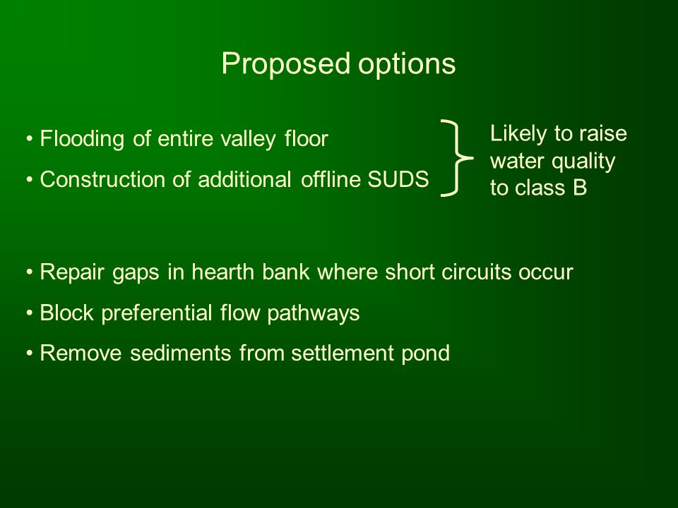 Proposed options Likely to raise water quality to class B