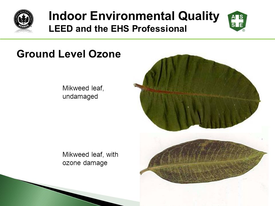 Leed and the ehs professional ppt download for Indoor environmental quality design