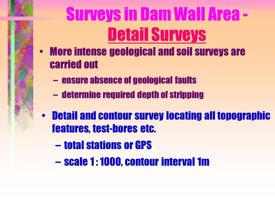 Surveys in Dam Wall Area - Detail Surveys