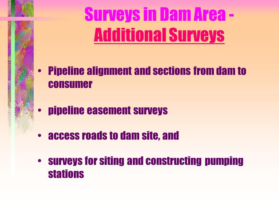 Surveys in Dam Area - Additional Surveys