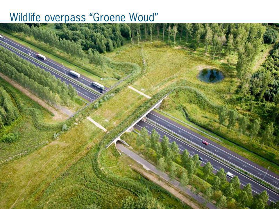 Wildlife overpass Groene Woud