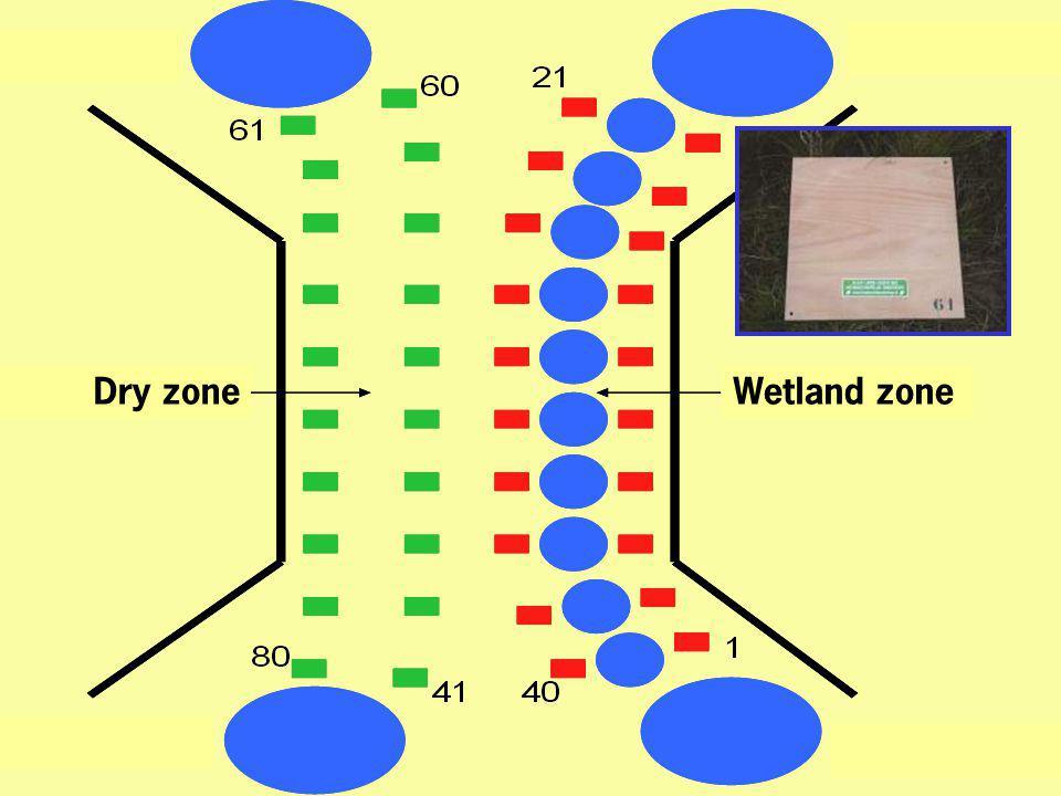 Dry zone Wetland zone