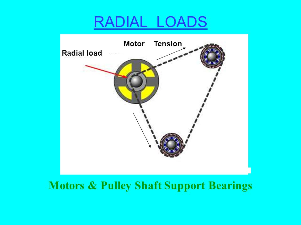 Motors & Pulley Shaft Support Bearings