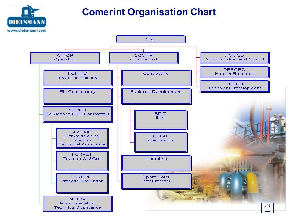 Comerint Organisation Chart