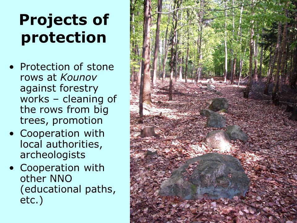 Projects of protection