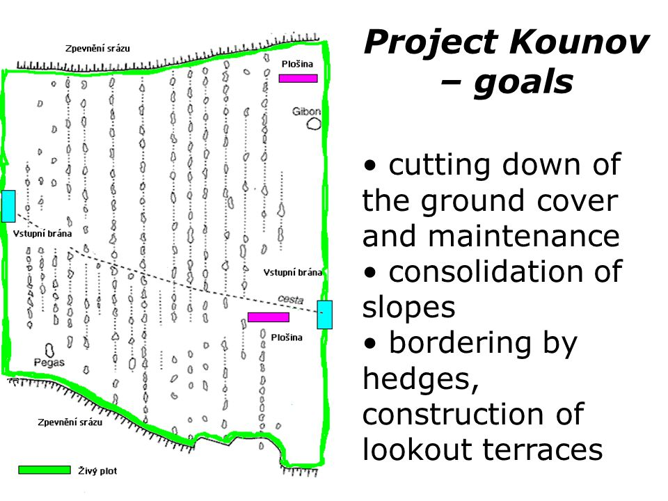 Project Kounov – goals cutting down of the ground cover and maintenance. consolidation of slopes.