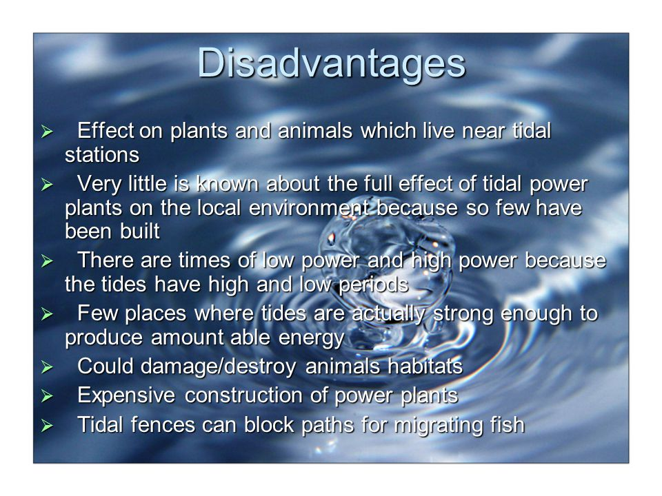 Disadvantages Effect on plants and animals which live near tidal stations.