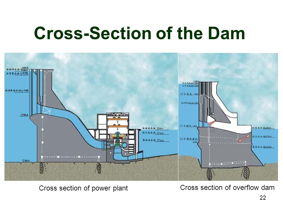 Cross-Section of the Dam