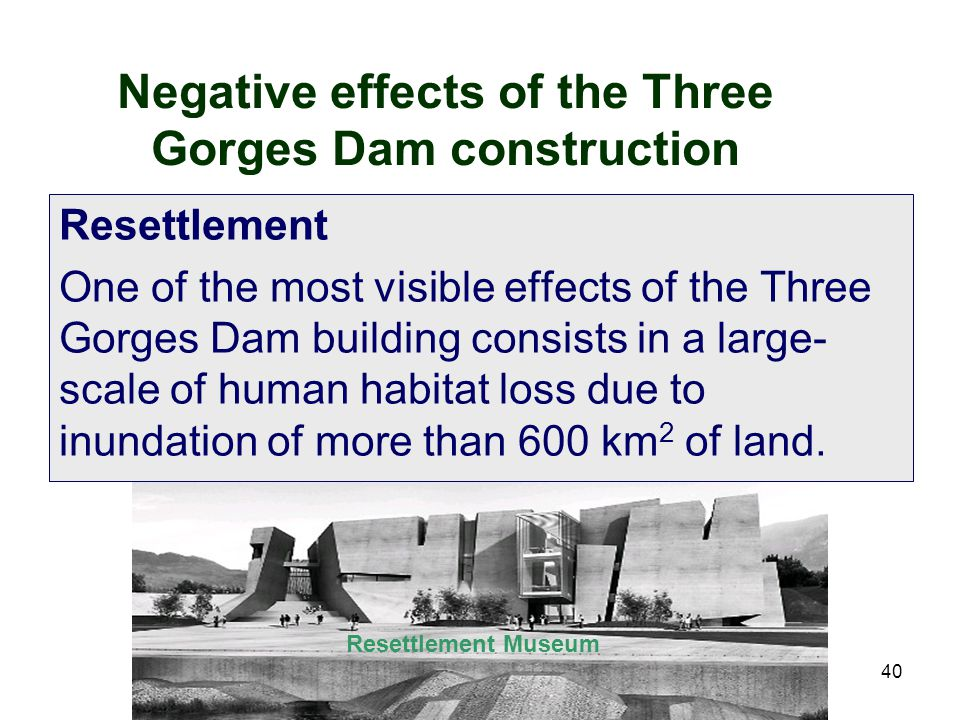 Negative effects of the Three Gorges Dam construction
