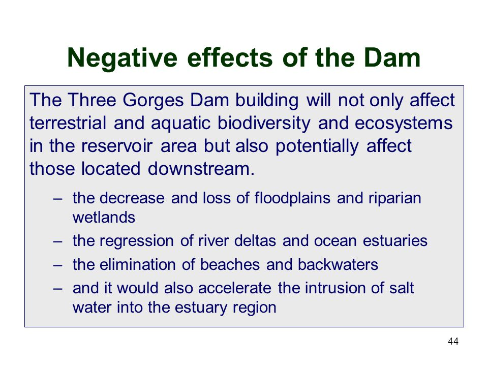 Negative effects of the Dam