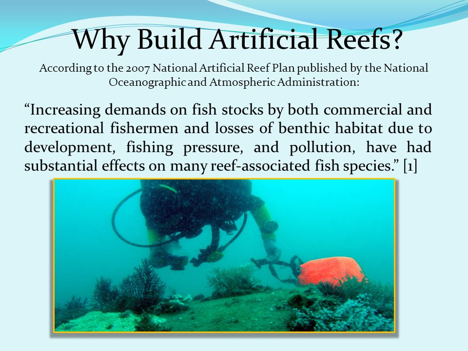Why Build Artificial Reefs