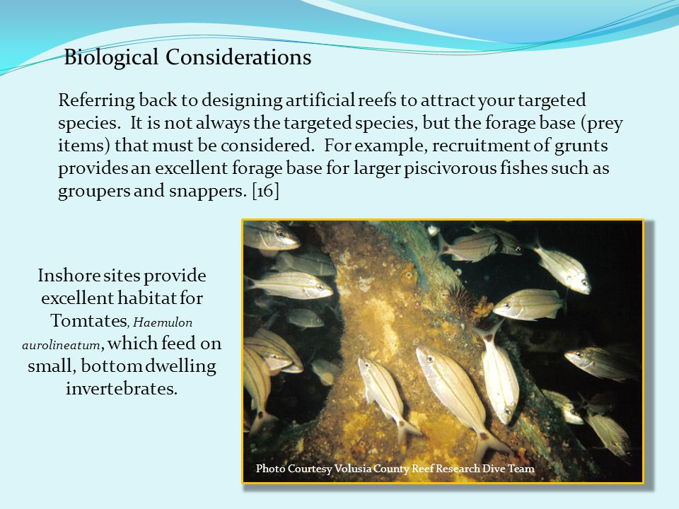 Biological Considerations