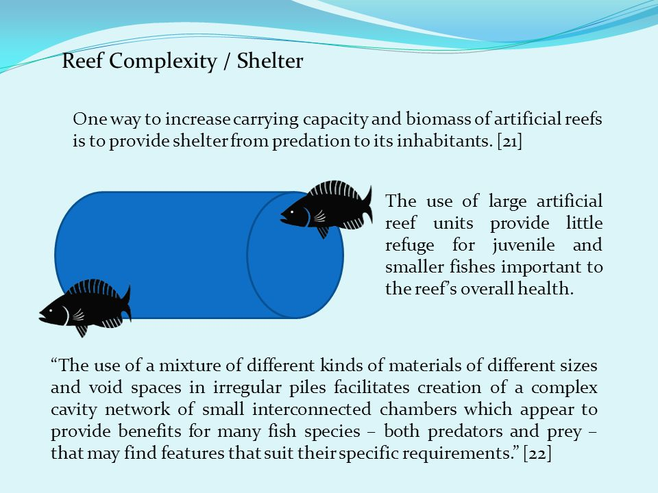 Reef Complexity / Shelter