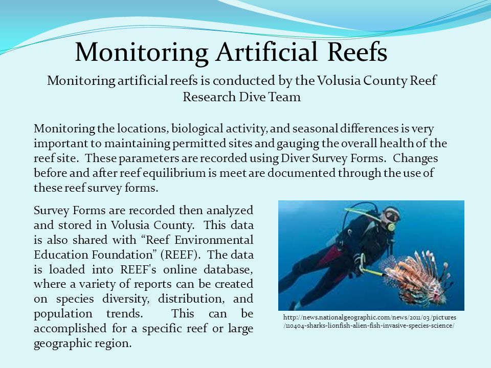 Monitoring Artificial Reefs