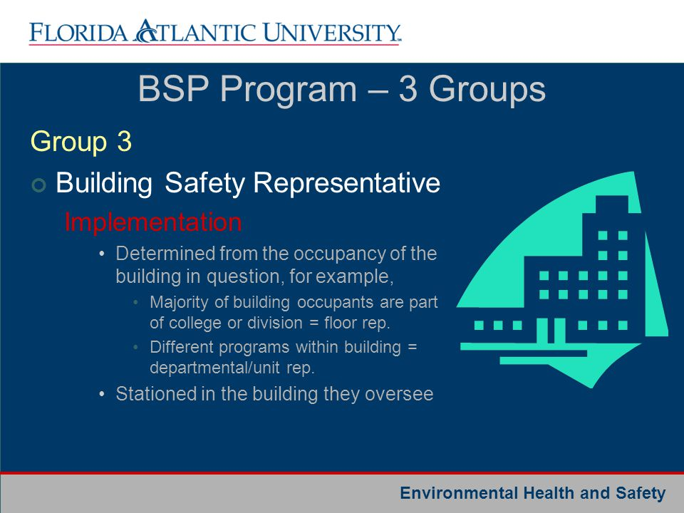 BSP Program – 3 Groups Group 3 Building Safety Representative
