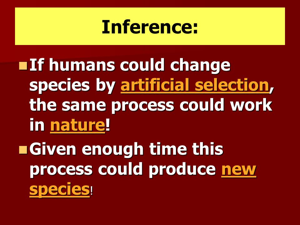 Inference: If humans could change species by artificial selection, the same process could work in nature!