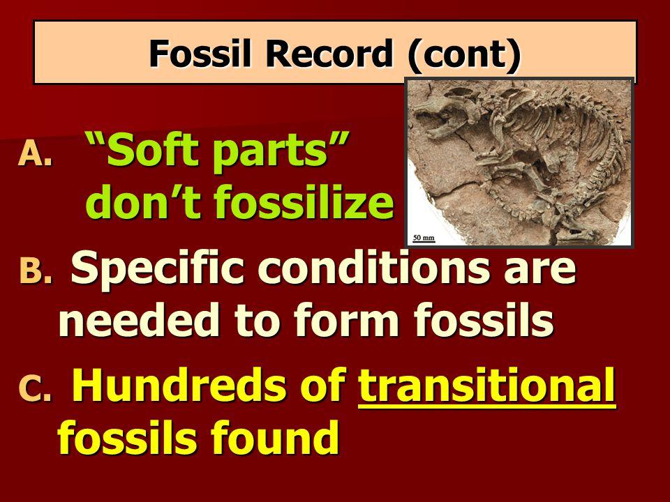 Soft parts don't fossilize