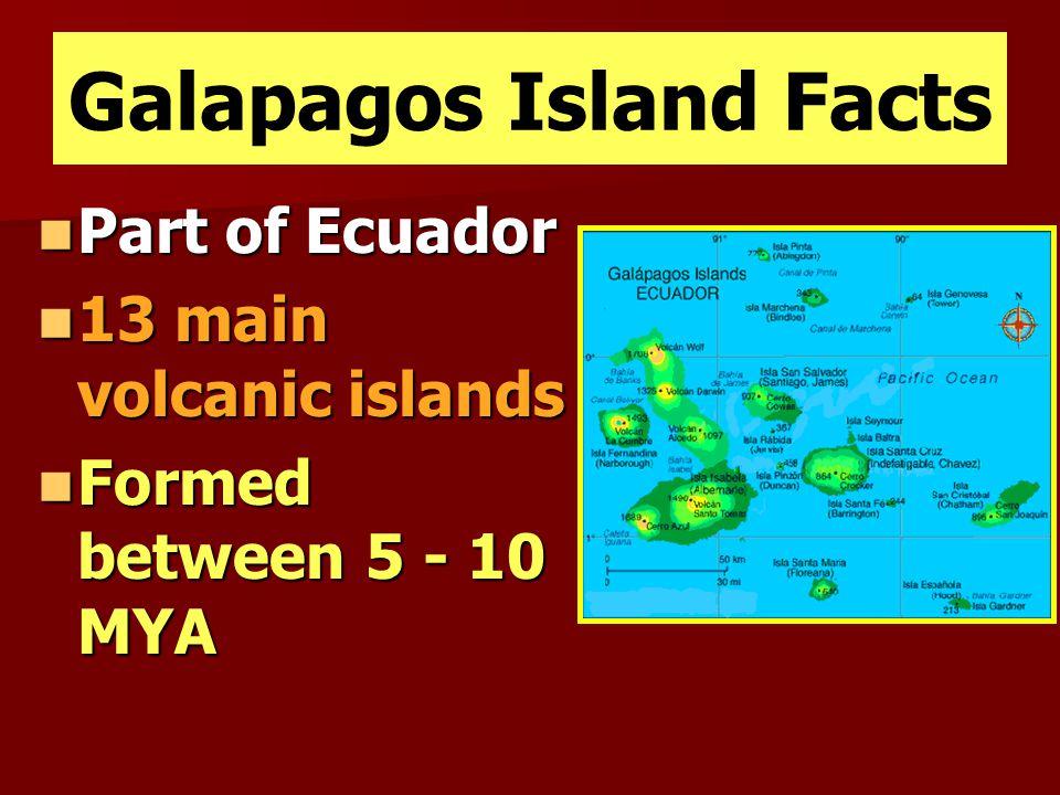 Galapagos Island Facts