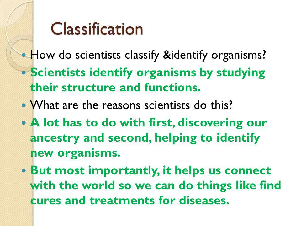Classification How do scientists classify &identify organisms