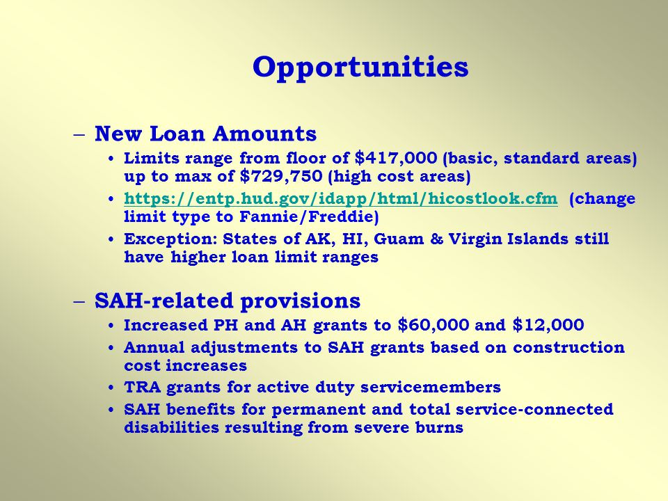 Opportunities New Loan Amounts SAH-related provisions