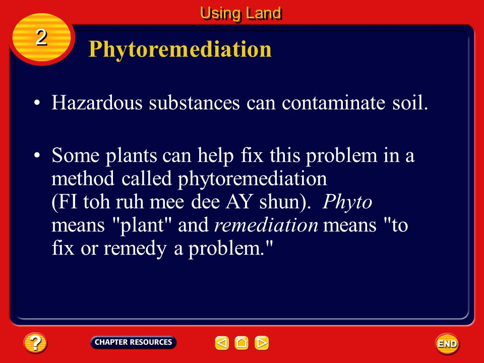 Phytoremediation 2 Hazardous substances can contaminate soil.