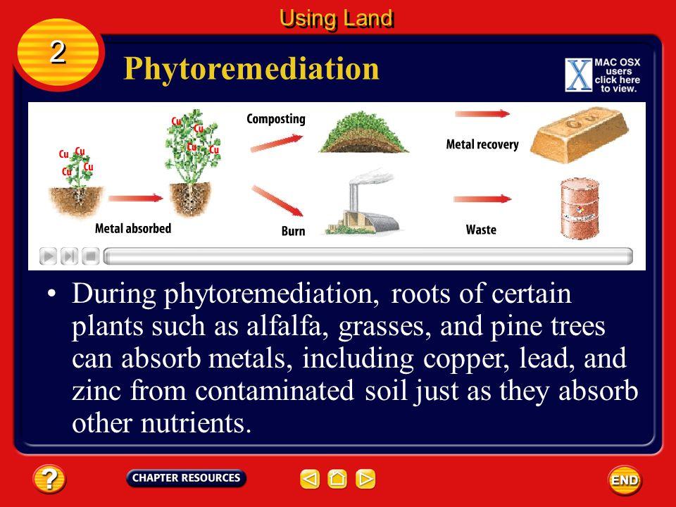 Using Land 2. Phytoremediation.