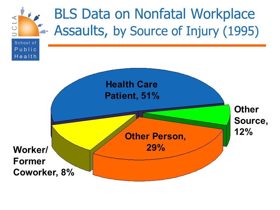 BLS Data on Nonfatal Workplace Assaults, by Source of Injury (1995)
