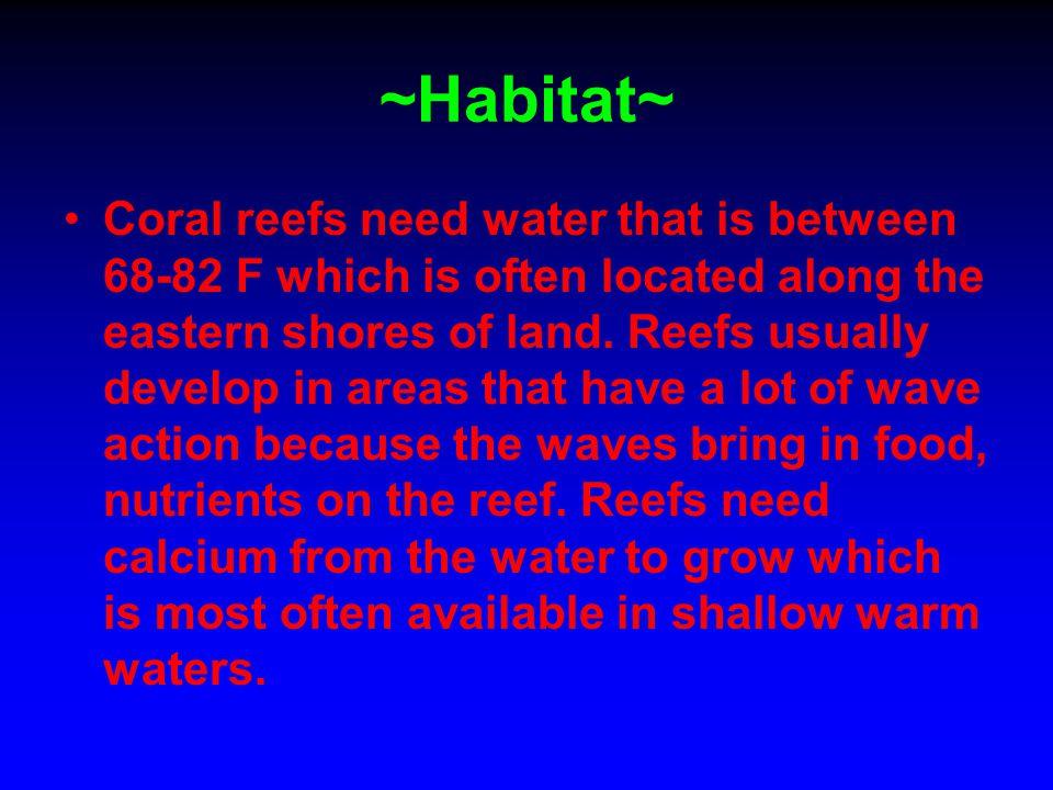 ~Habitat~