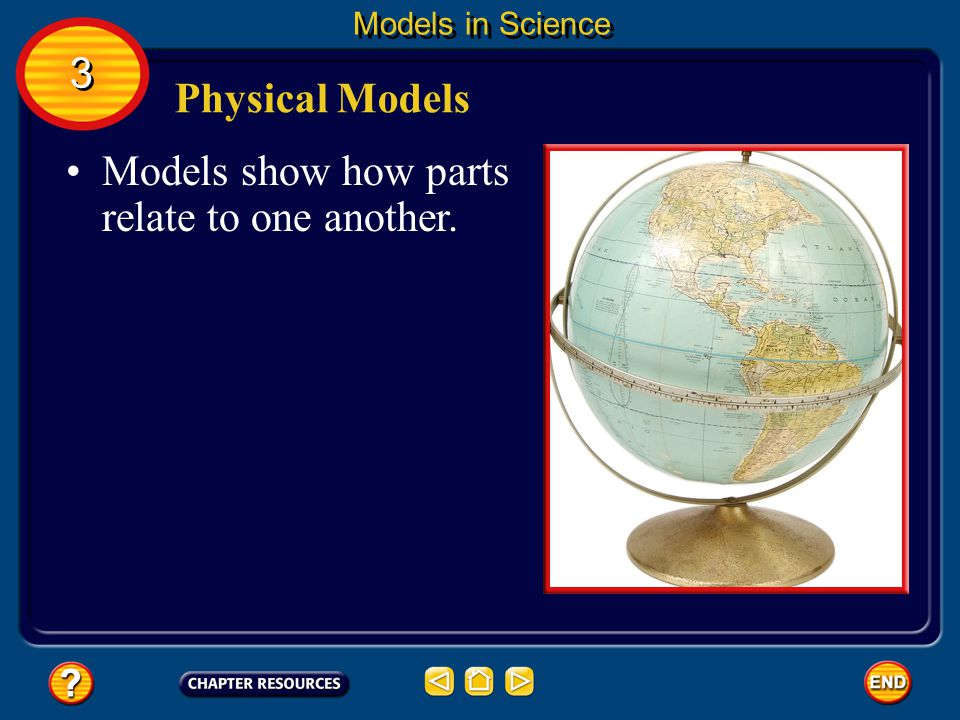 Models show how parts relate to one another.