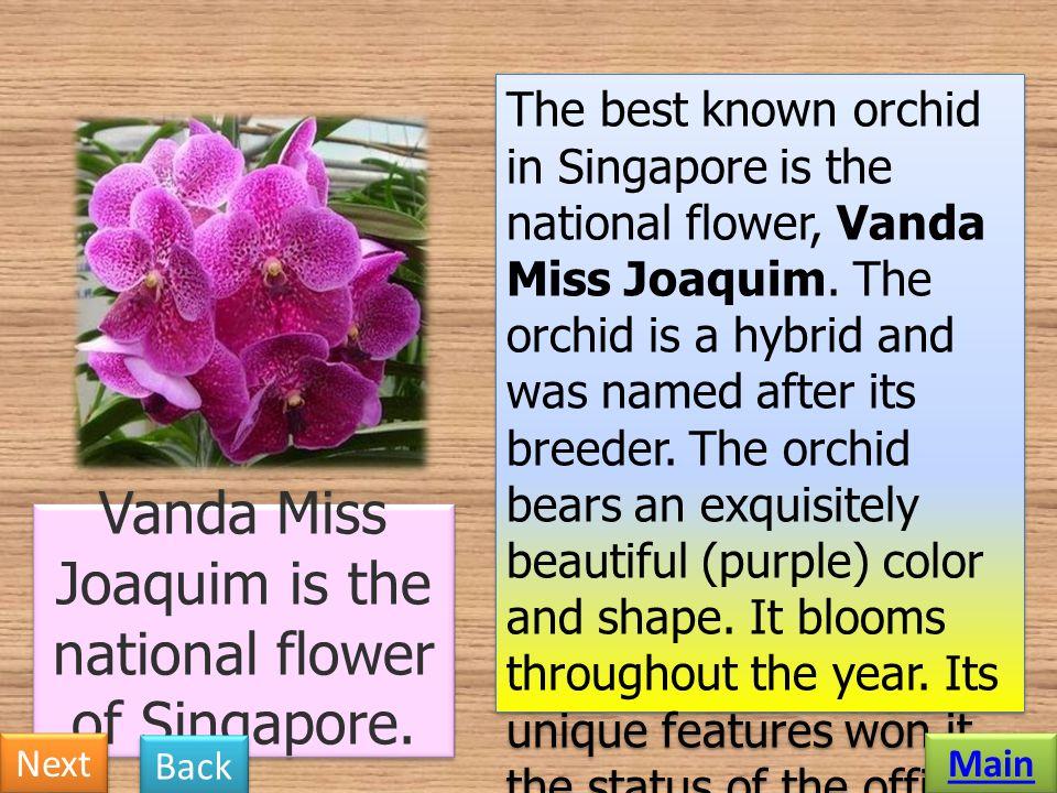 Vanda Miss Joaquim is the national flower of Singapore.