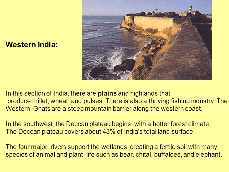 Western India: . In this section of India, there are plains and highlands that.
