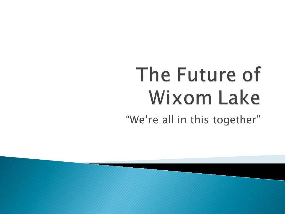 The Future of Wixom Lake