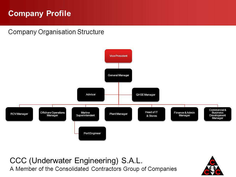 Company Profile Company Organisation Structure Vice President