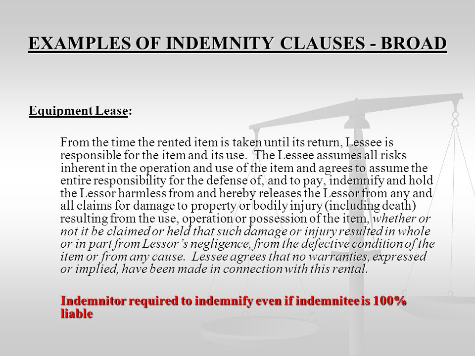 EXAMPLES OF INDEMNITY CLAUSES - BROAD