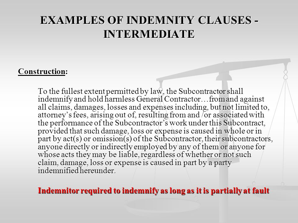 EXAMPLES OF INDEMNITY CLAUSES - INTERMEDIATE