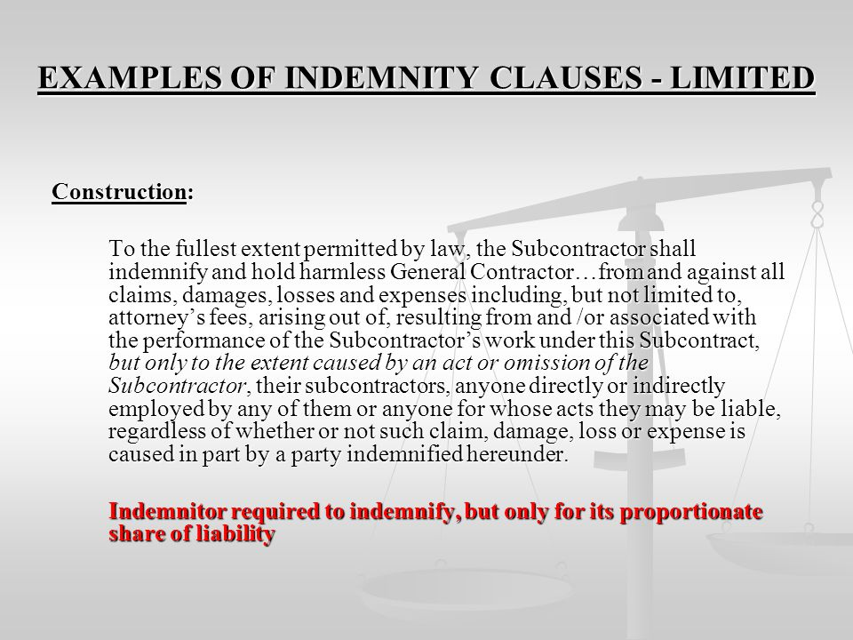 EXAMPLES OF INDEMNITY CLAUSES - LIMITED