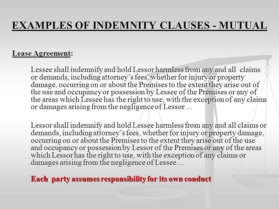 EXAMPLES OF INDEMNITY CLAUSES - MUTUAL