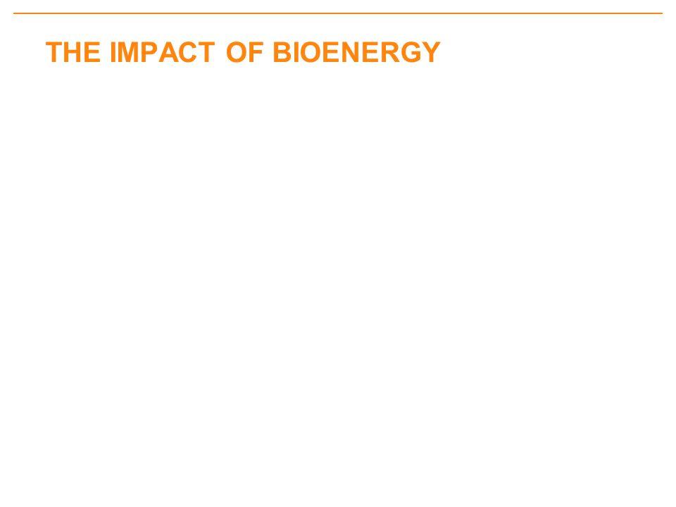 THE IMPACT OF BIOENERGY