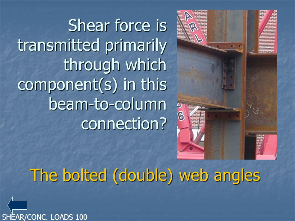 The bolted (double) web angles