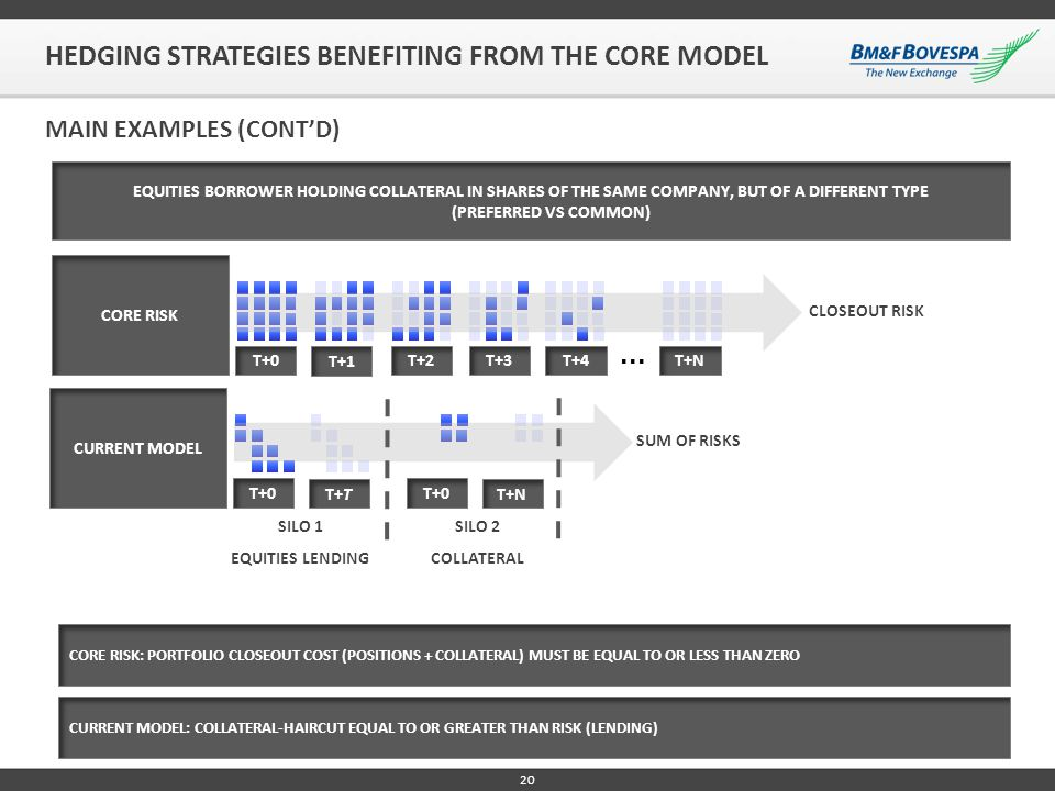 HEDGING STRATEGIES BENEFITING FROM THE CORE MODEL