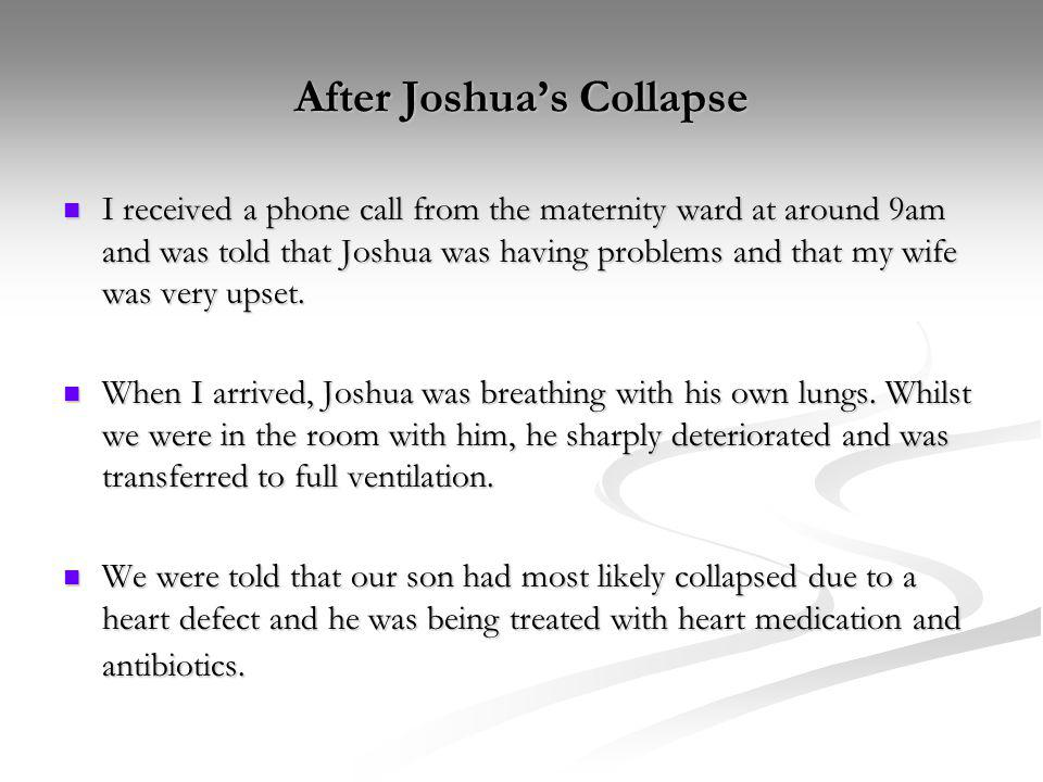 After Joshua's Collapse