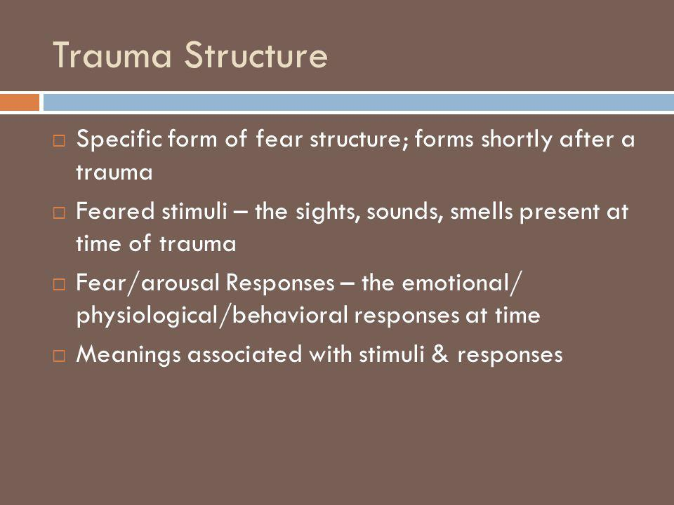 Trauma Structure Specific form of fear structure; forms shortly after a trauma.